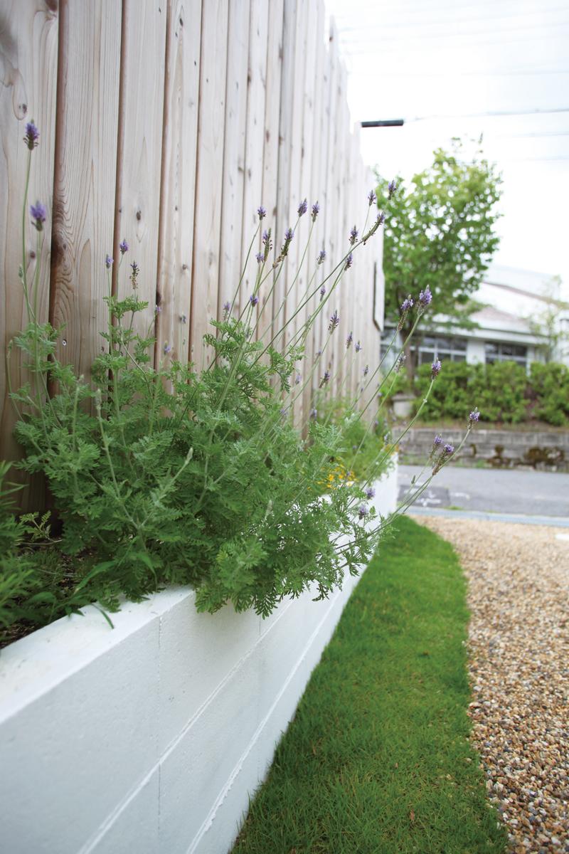 庭園設計・施工・管理|MI邸新築外構(滋賀県大津市)