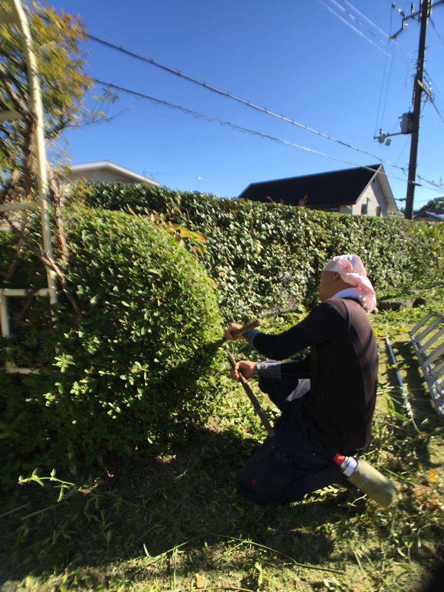 庭園管理・剪定|T邸(滋賀県大津市)